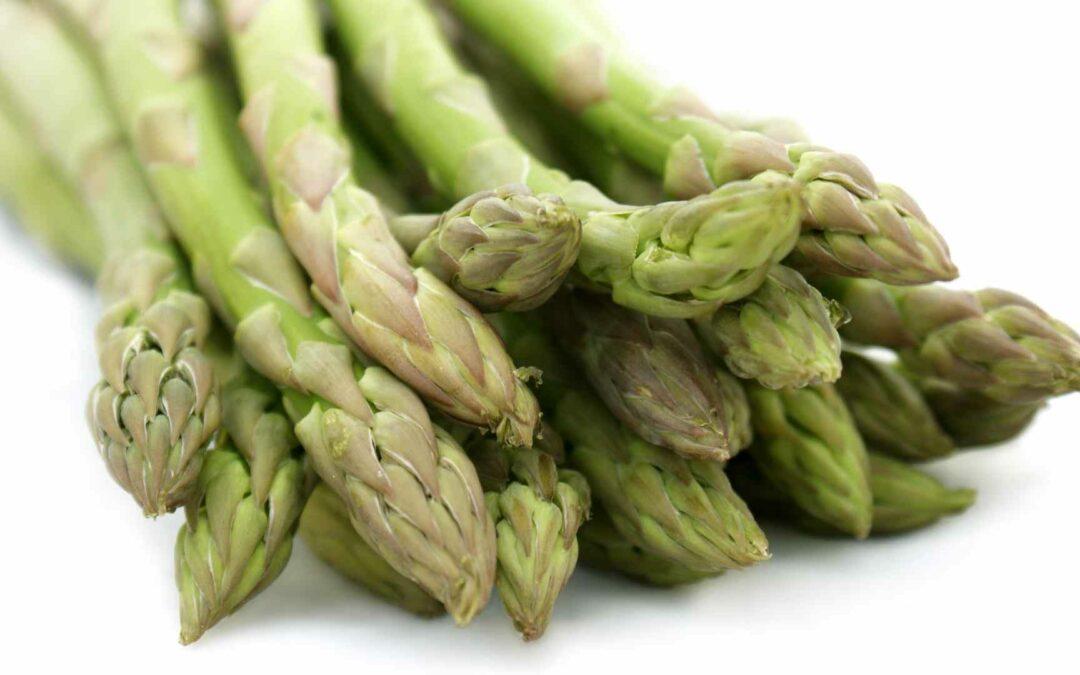 mangiare asparagi